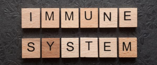 6 Easy – and Natural – Ways to Boost Your Immune System image